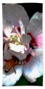 Artistic Shades Of Light And Pollinating Bee Beach Towel