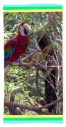 Artistic Wild Hawaiian Parrot Beach Towel