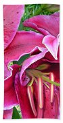 Asian Lily Flowers Beach Towel