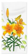 Asiatic Hybrid Lily Beach Towel