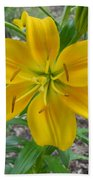 Asiatic Lily 2 Beach Towel