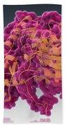 Aspartate Transaminase, Molecular Model Beach Towel