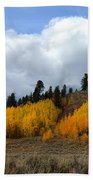 Aspen Hillside Beach Towel