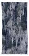 Aspen Beach Towel