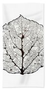 Aspen Leaf Skeleton 1 Beach Towel