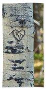 Aspen Love Beach Towel
