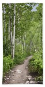 Aspen Path Beach Towel