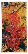 Aspen Reds Beach Towel