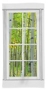 Aspen Tree Forest Autumn Time White Window View  Beach Towel by James BO  Insogna