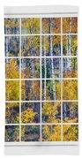 Aspen Tree Magic Cottonwood Pass White Window Portrait View Beach Towel by James BO  Insogna