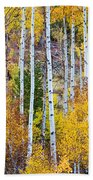 Aspen Tree Magic Beach Towel