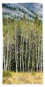 Aspen Trees Along The Bow Valley Beach Towel