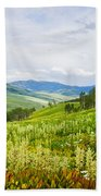 Aspen Trees And Wildflowers Beach Towel