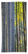 Aspen Trunks Beach Towel by Inge Johnsson
