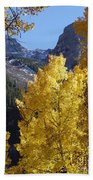 Aspen Window Beach Towel