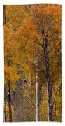 Aspens Ablaze Beach Towel