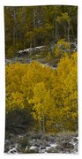 Aspens In Snow Beach Towel