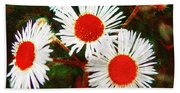 Asters Bright And Bold Beach Towel