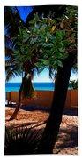 At Dog's Beach In Key West Beach Towel by Susanne Van Hulst