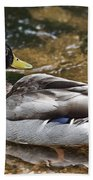 At The Duck Pond V5 Beach Towel