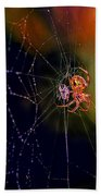 At The Spider Net Beach Towel