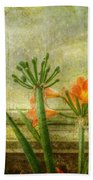 At The Window Beach Towel