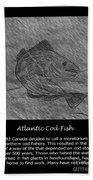 Atlantic Cod Fish Sketch Beach Towel