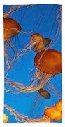 Atlantic Sea Nettle Jellyfish Beach Towel