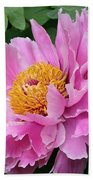 Attractive Pink Peony Beach Towel