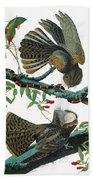 Audubon Chuck-will's Widow Beach Towel