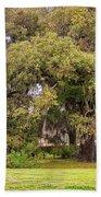 Audubon Park Beach Towel