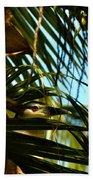 Auku'u The Black Crowned Night Heron Beach Towel