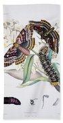 Australian Butterflies Beach Towel by Philip Ralley
