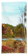 Autmn Pond Closer Look Beach Towel