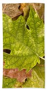 autumm is coming 3 - A carpet of autumn color leaves Beach Towel