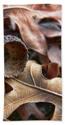 Autumn Acorn And Oak Leaves Beach Towel by Jennie Marie Schell