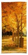Autumn Alley Beach Towel
