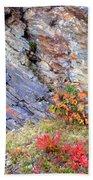 Autumn And Rocks Vertical Beach Towel
