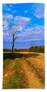 Autumn And The Tree Beach Towel