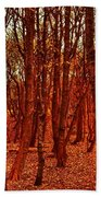 Autumn At Formby Woods  Beach Towel