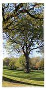 Autumn At Runnymede Uk Beach Towel