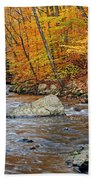 Autumn At The Black River Beach Towel