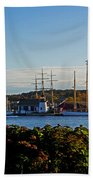 Autumn At The Seaport Beach Towel
