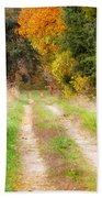 Autumn Beauty On Rural Dirt Road Beach Towel