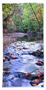 Autumn Begins Beach Towel by Frozen in Time Fine Art Photography