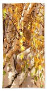 Autumn Birch Leaves Beach Towel