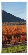 Autumn Blueberry Panorama Beach Towel