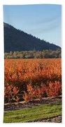 Autumn Blueberry Panorama Beach Sheet