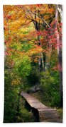 Autumn Boardwalk Beach Towel by Bill Wakeley