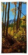 Autumn Brilliance 2 Beach Towel